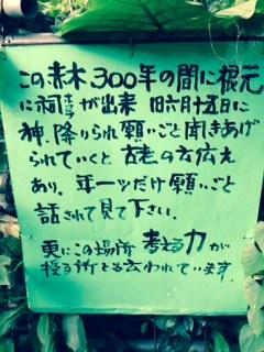 ooakagi3