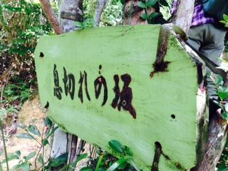 ishikawa23
